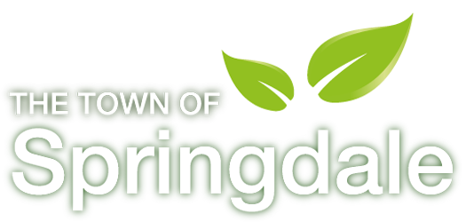Town of Springdale